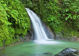Rain forest waterfall at cycling camp in Guadeloupe