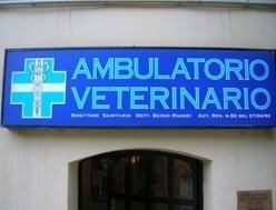 Clinica veterinaria a Siena