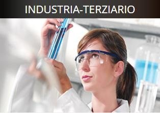 Industria-terziario