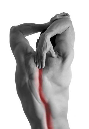 postura-spina-dorsale