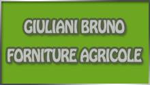 giuliani bruno logo