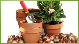 forniture giardinaggio