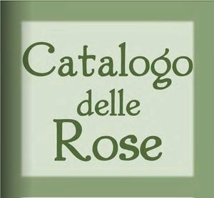 catalogo rose