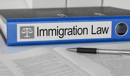 Immigration law file