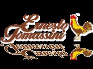 Logo Ernesto Tomassini