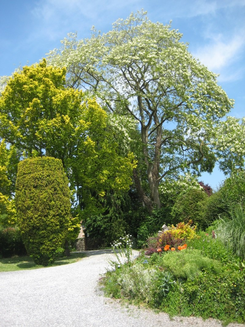 Orchard House Guest House Bristol & Chew Valley.