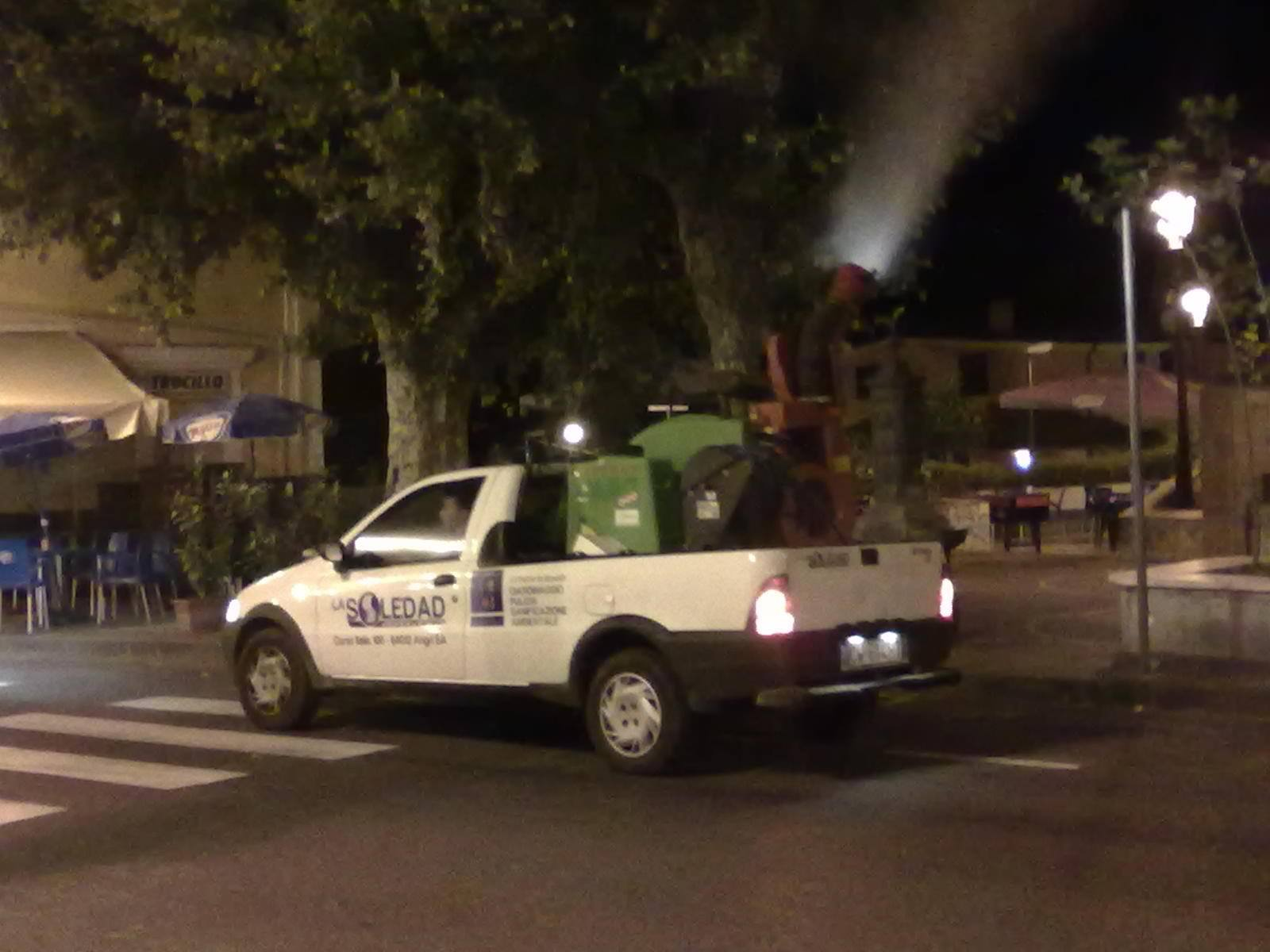 Potatura alberi su una strada