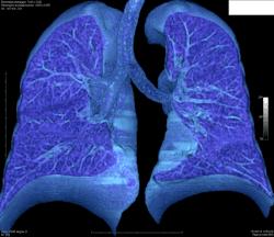 prestazioni radiologiche