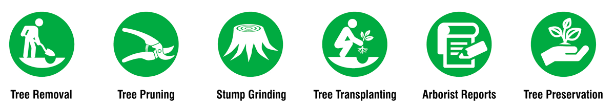 tree-symbols