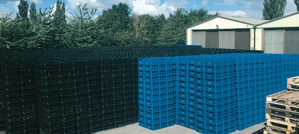 yard stacked with blue plastic pallets