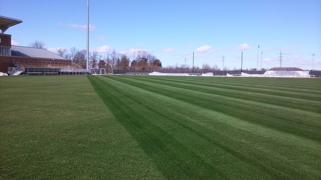 Purdue's soccer field's grass looks healthier after the turf covers opened