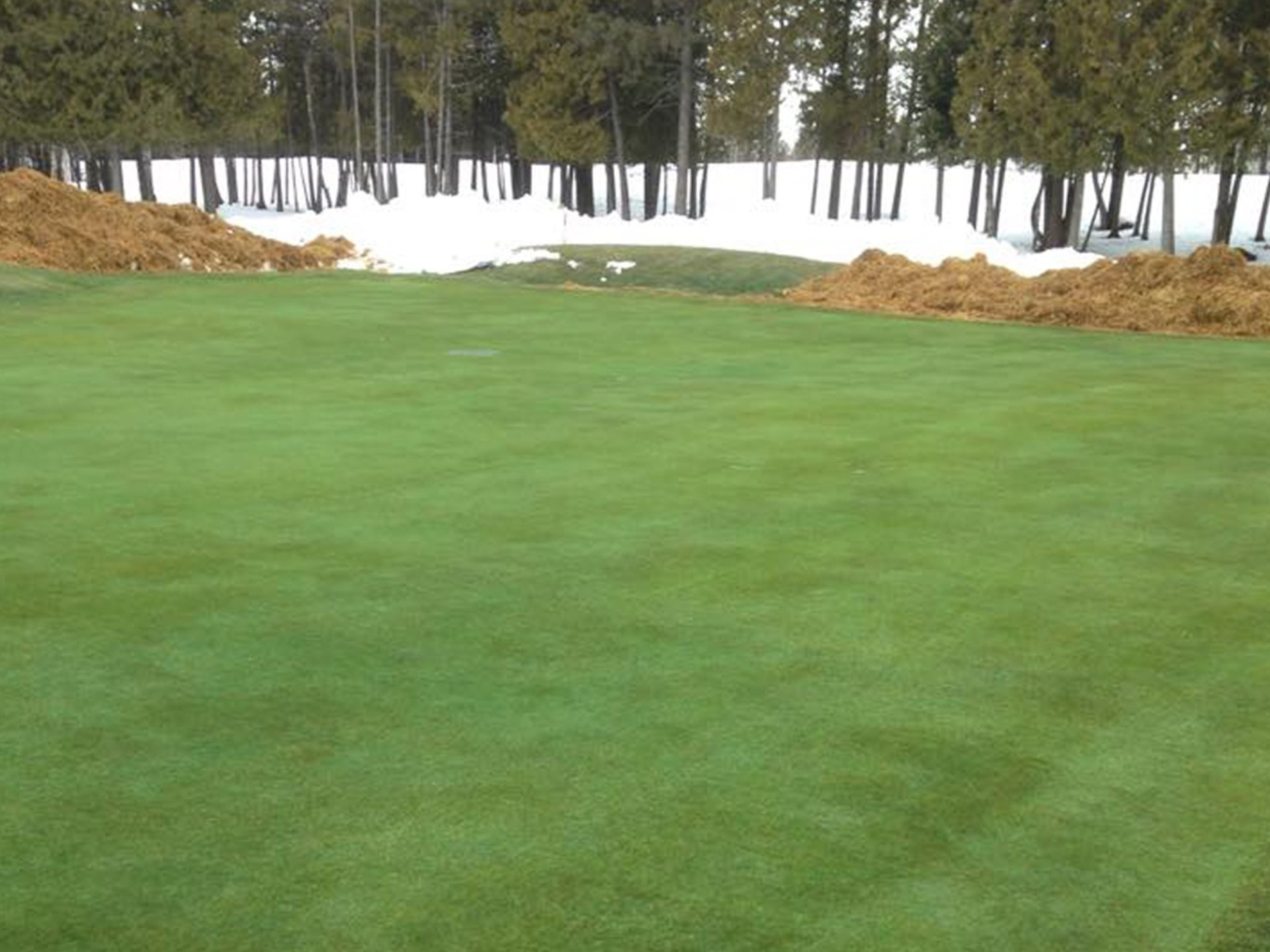 GOLF GREEN COVERS AND TURF COVERS spring result with the covers