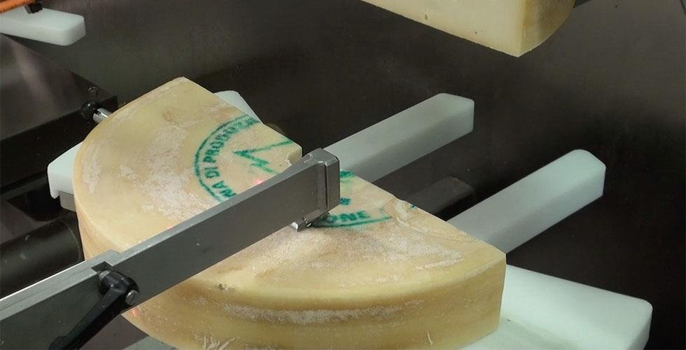 Cutting and packaging warehouse - fontina