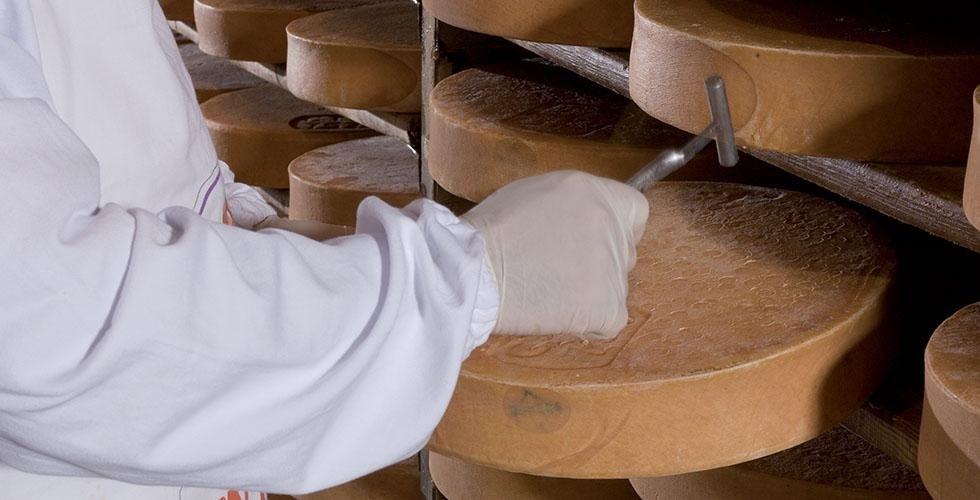 Magazzini produttori latte e fontina