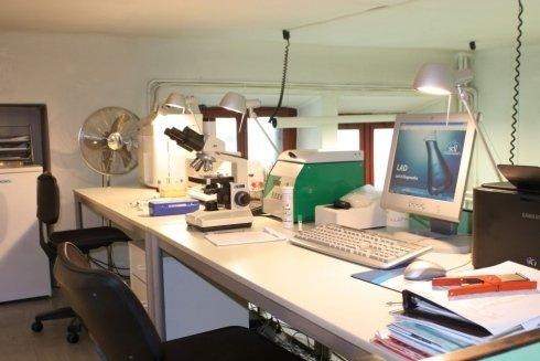 Lo studio veterinario ha un laboratorio di analisi interno