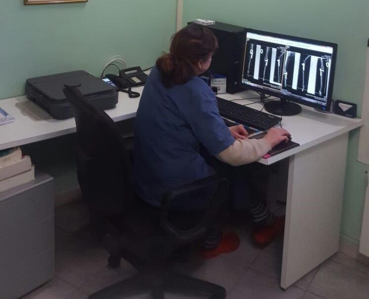 Lo studio veterinario effettua vaccini e check up medici completi