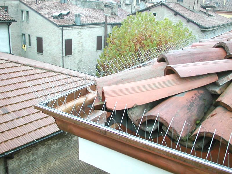 tegole di un tetto da sistemare