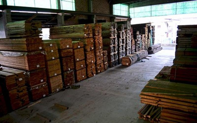 supply of wood in Busseto