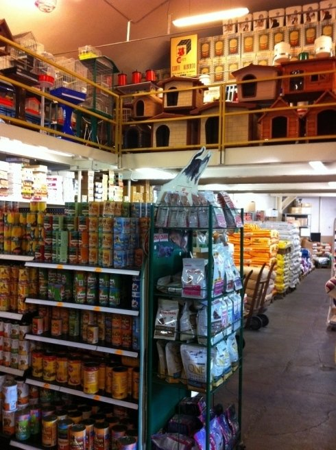 abbigliamento e assortimento prodotti per animali