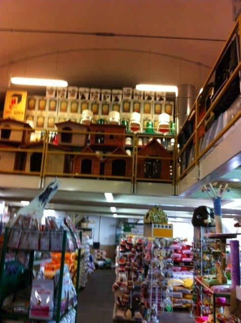 negozio per animali Corti Alberto a Como