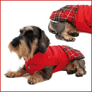 abbigliamento per animali