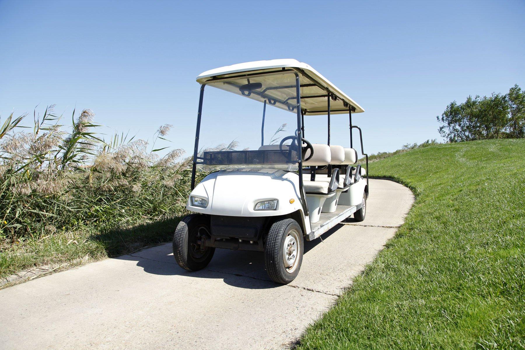 una golf cart bianca e vicino del prato con delle piante