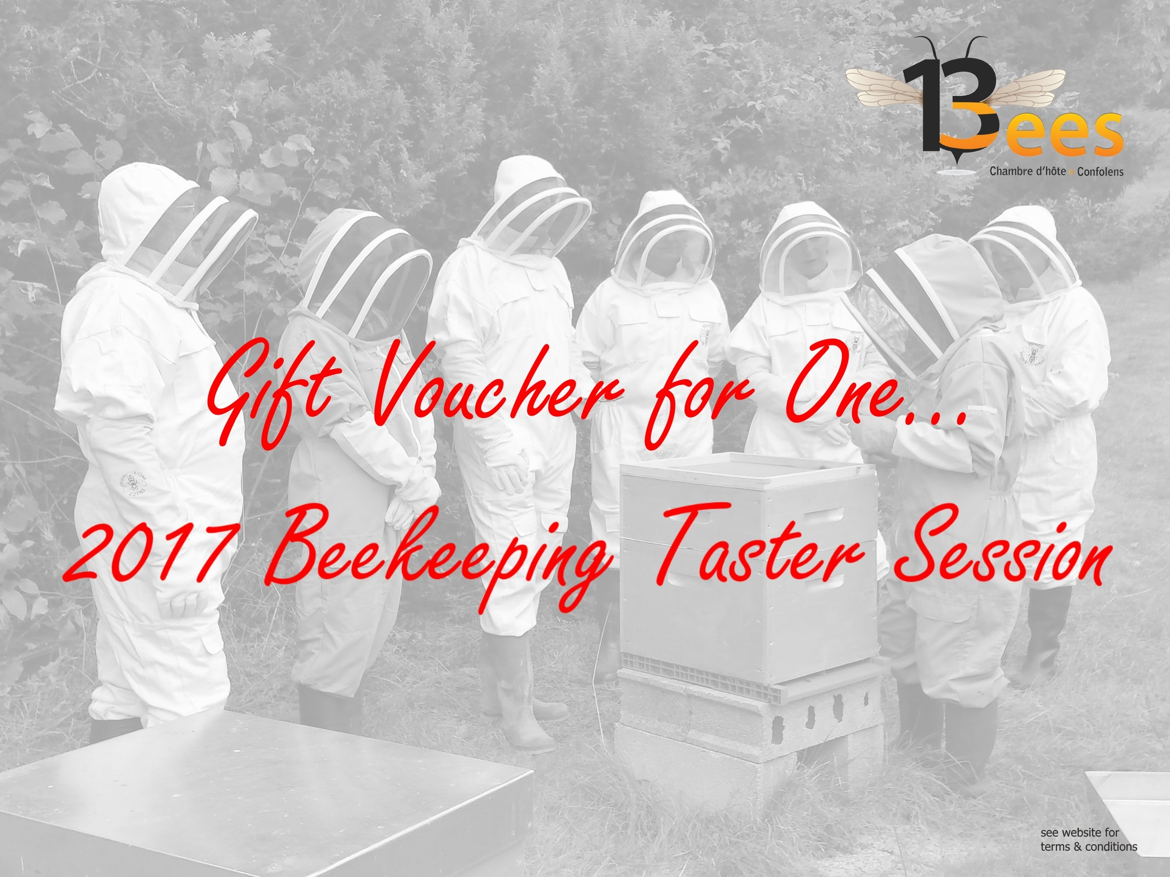 Beekeeping Taster Session Christmas Voucher