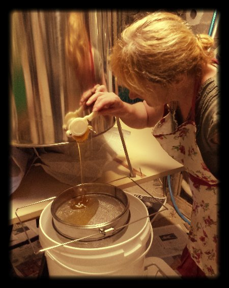 Amanda extracting our honey harvest