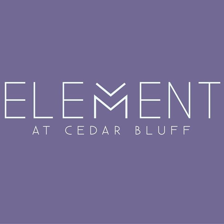 Forest Ridge Apartments Knoxville Tn: Element Cedar Bluff