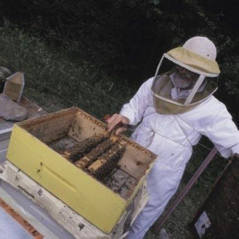 Attrezzature per apicoltori