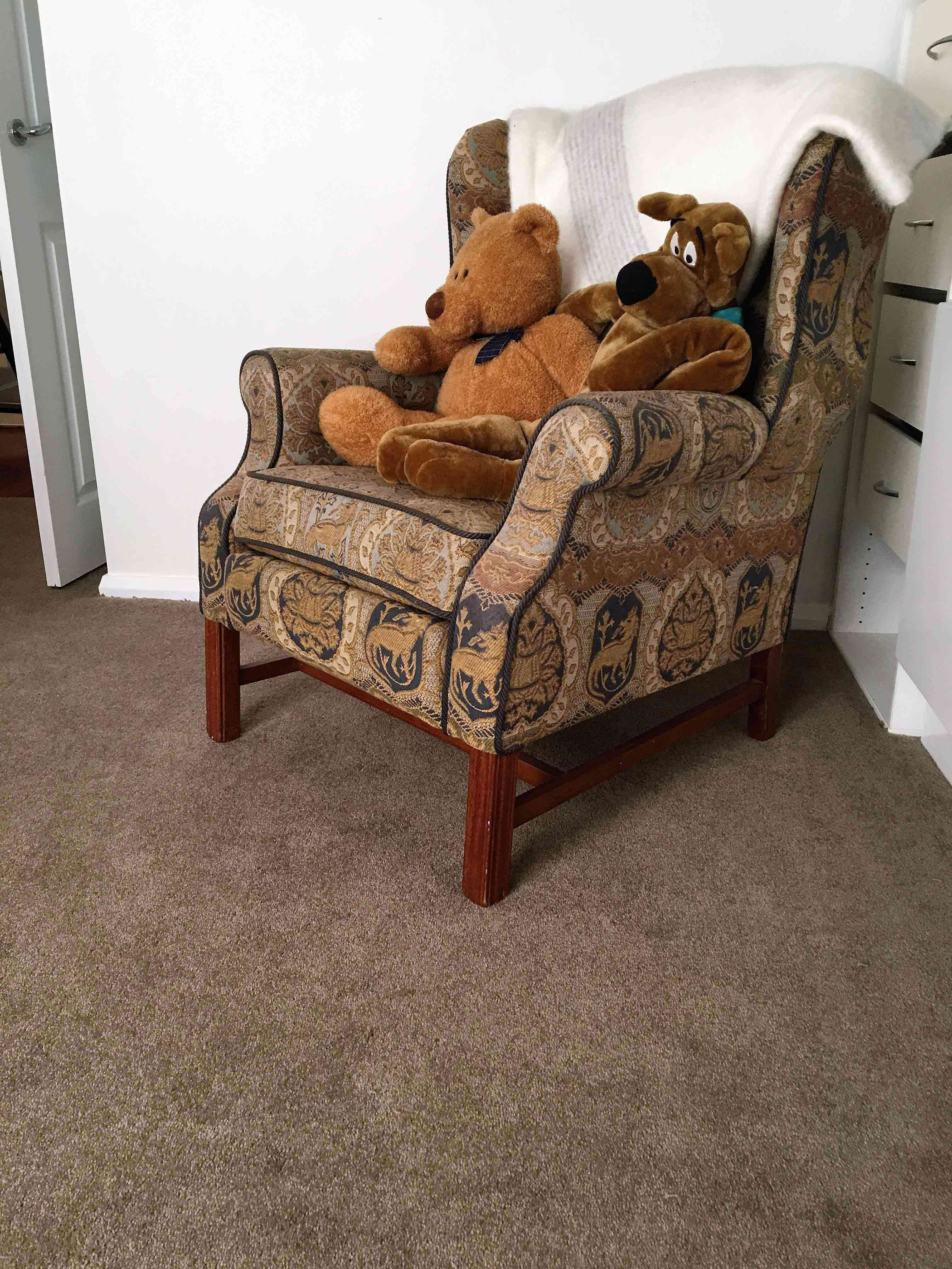 55 Floorz Carpet Installations Gold Coast Brown Bear on Chair