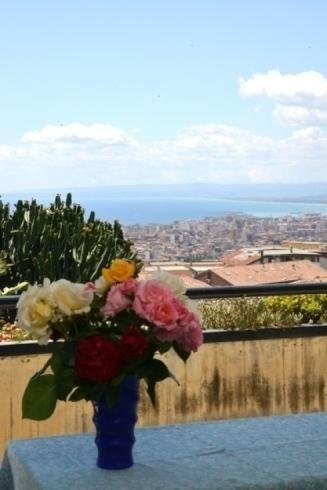 vista panoramica con vaso di fiori