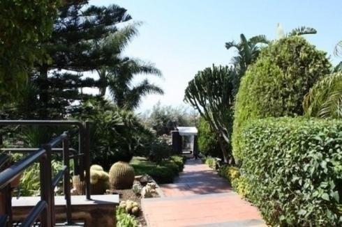 sentiero in mezzo al giardino