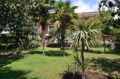giardino con palme