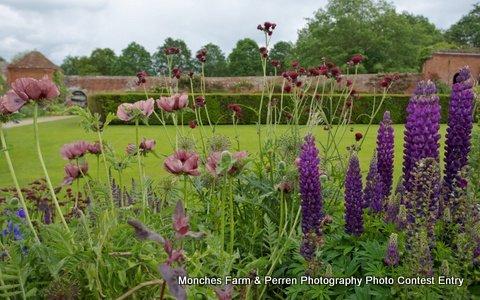 English Manor Garden
