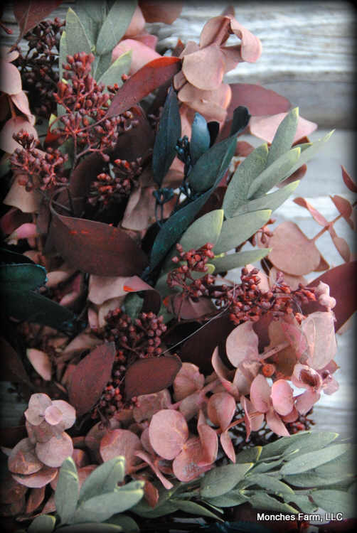 Euacalyptus Wreath Class #4