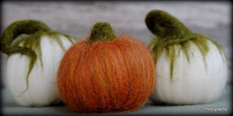 Needle Felted Pumpkins class Monches Farm