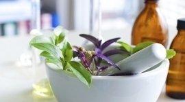estratti di piante medicinali