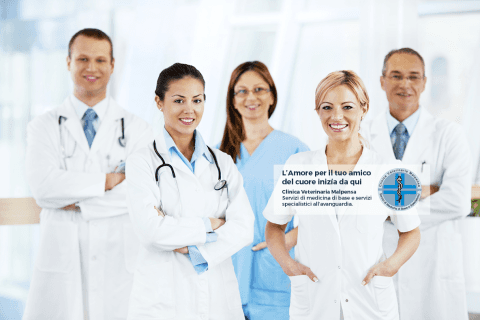 Clinica Veterinaria Malpensa