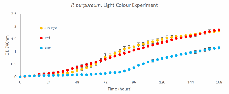 Growth curves of algae cultures growing on three different  light profiles