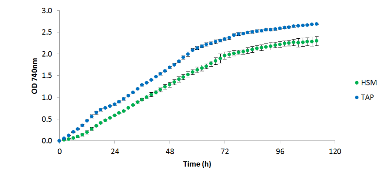 Growth curves of algae cultures growing on two different  media