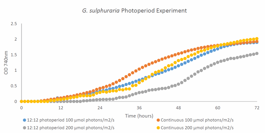 Growth curves of algae cultures growing on four different light profiles