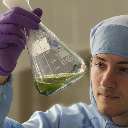 Algae research scientist holding 1 litre Erlenmeyer flask partially filled with algae culture