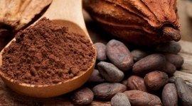 Cacao Ghio E Galli