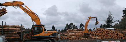 Tractor for professional tree service in Canterbury