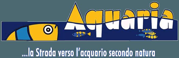 Aquaria Rieti, Aquaria Marchetti Alessio, Acquariologia Aquaria Rieti