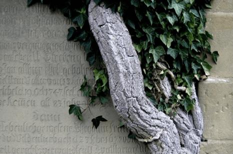 onoranze funebri defabianis