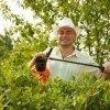 fertilizzanti naturali e biologici, concimi, piante
