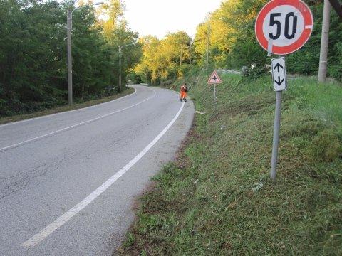 Manutenzione del verde stradale