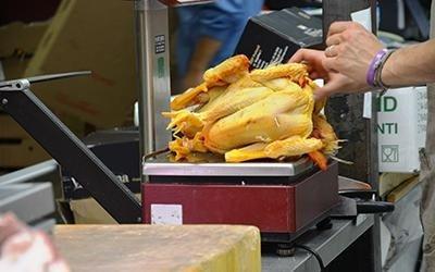 polli freschi